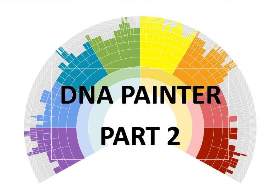 DNA Painter Part 2