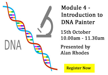 Module 4  DNA