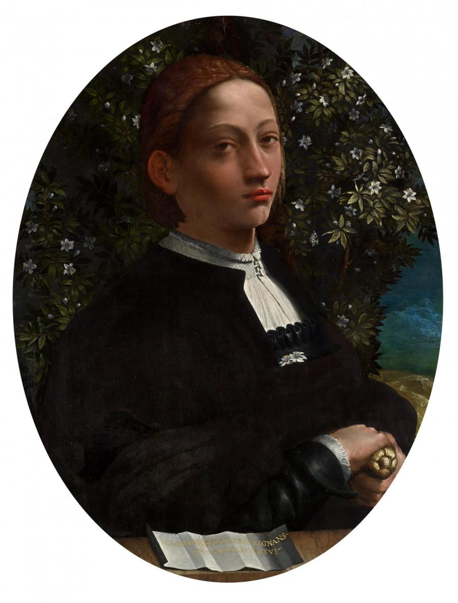 Lucrezia Borgia, Dosso Dossi, NGV