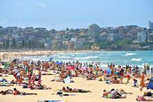 People. Manly Beach 2014